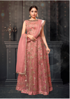Peach Color Designer Net Gown