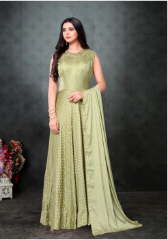 Light Green Color Designer Chinnon Chiffon And Net Fabric Gown