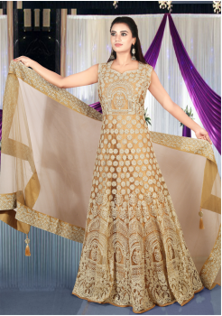 Light Gold Brown Color Art Silk Designer Gown