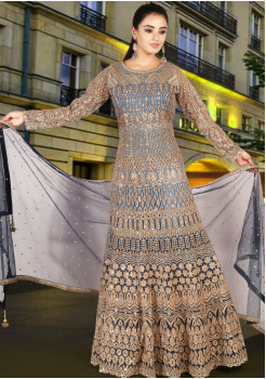 Shadow Blue Color Heavy Net Designer Gown
