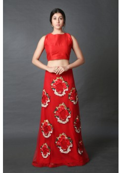 Blazing red embroidered skirt with crop top